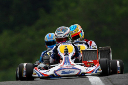 Who will challenge Nyck de Vries in 2011?
