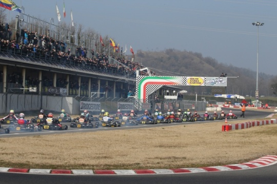 23rd Winter Cup - Preview KZ2
