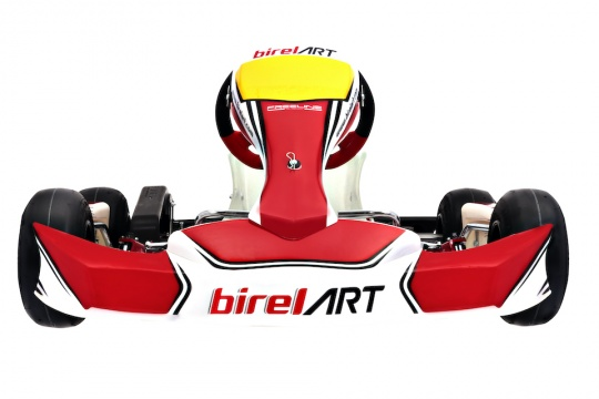 Focus: The Birel ART C28 S11 for Minikart