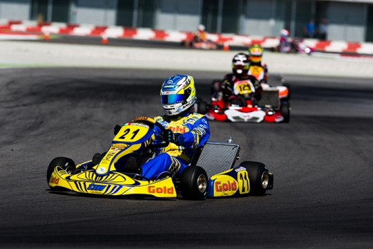 WSK Champions Cup: instructions for use
