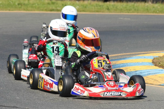 Rotax Challenge of the Americas champions crowned for 2014